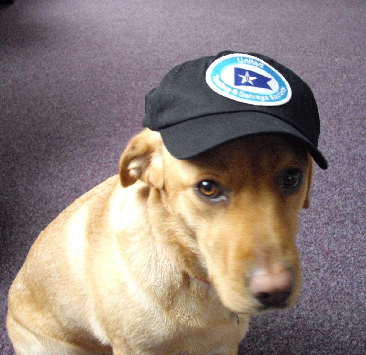 Society Baseball Cap